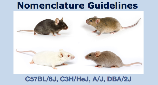 Nomenclature Guidelines