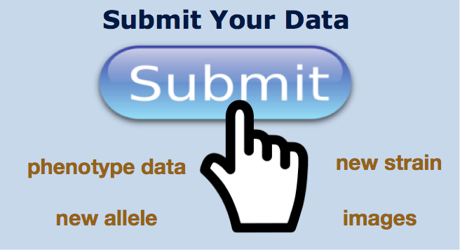 Submit Your Data