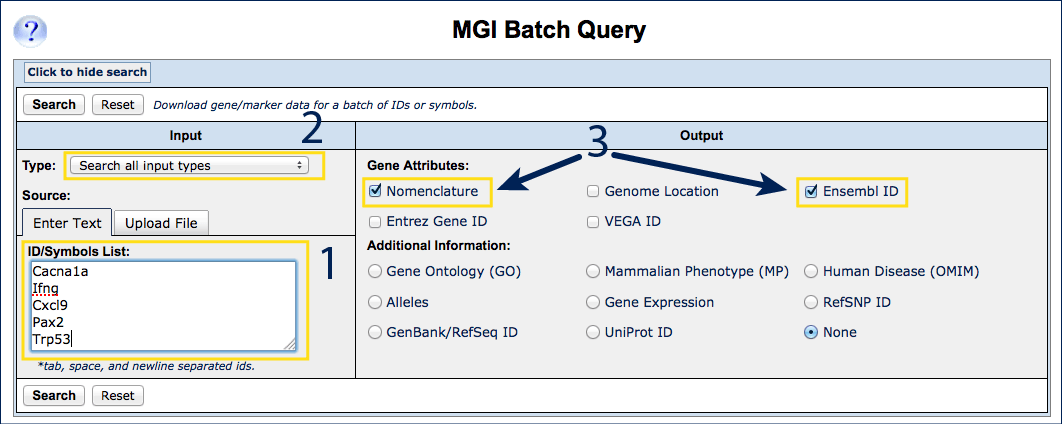 Batch Query search