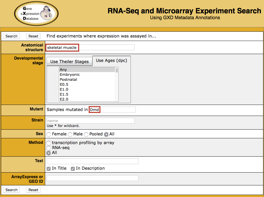 RNA-Seq and Microarray Experiment Search