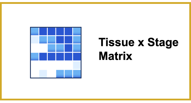 GXD Tissue Matrix