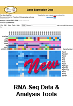 New Gene Expression + Phenotype Comparison Matrix