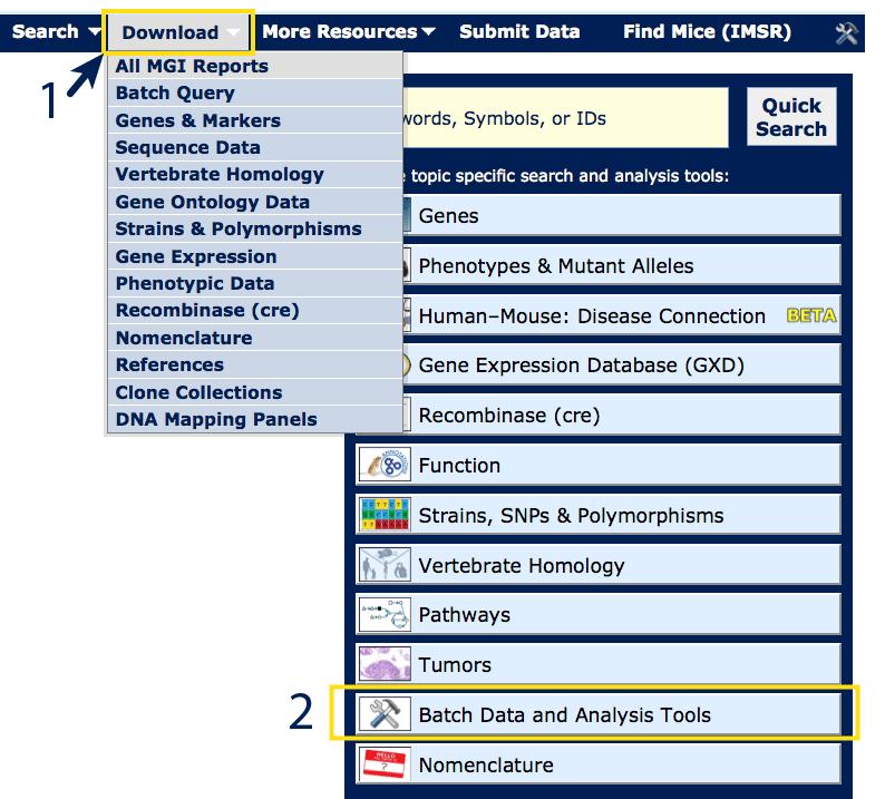 database gene example