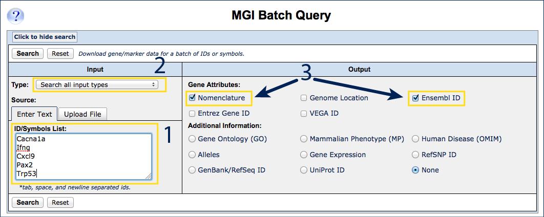 Mgi 612 How To Use Mgi