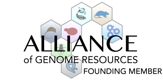 MGI-Mouse Genome Informatics-The international database resource for