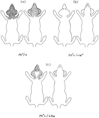 Figure 10 6
